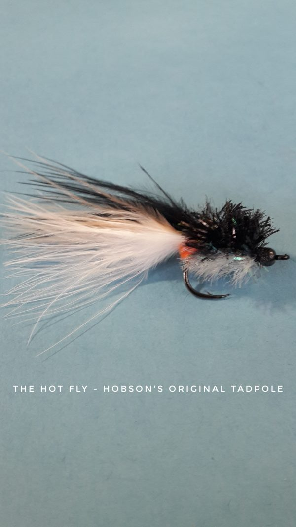 The HOT fly